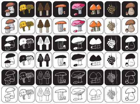 edible: illustration of icons on a black and white background edible mushrooms