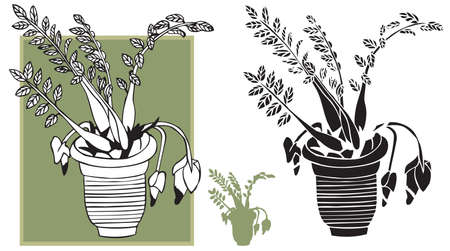 flower room: illustration on white background silhouette and flower room in the pot drawing Illustration