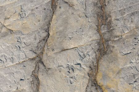 Natural background texture of a hard stone with a rump plan.