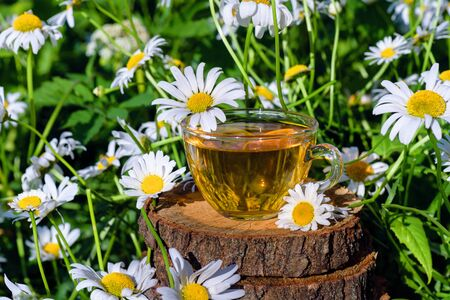 A cup of tea standing on a wooden surface, in the colors of a white daisy, in the rays of warm sunlight. Stockfoto