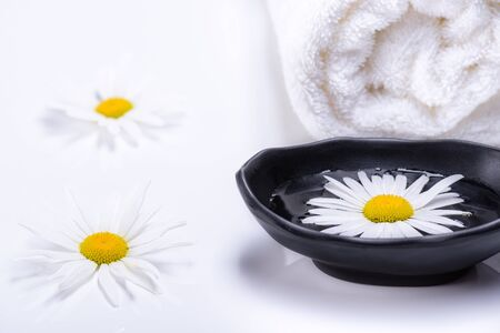 Spa treatment concept with terry towel and black plate with liquid in which white daisy floats. Natural oils for SPA. White terry towel and white daisies lying white background.