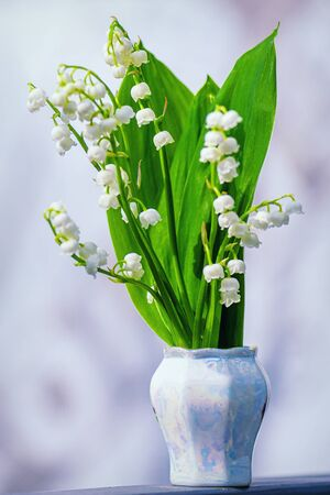Lily of the valley. Flower Spring Lilies of the Valley Background Vertical Closeup Macro. Floral spring background in bright spring colors with copy space.