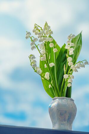 Lily of the valley. Flower Spring Lily of the Valley Background Vertical Close-up.