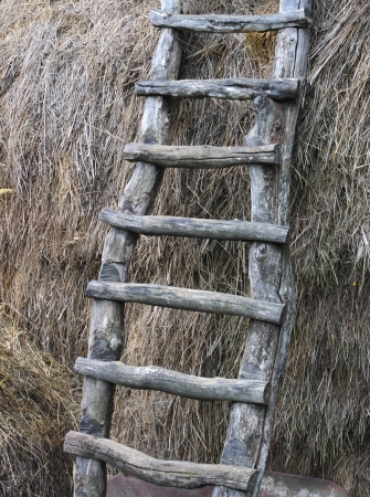 hayloft: Old wooden stairs to the hayloft