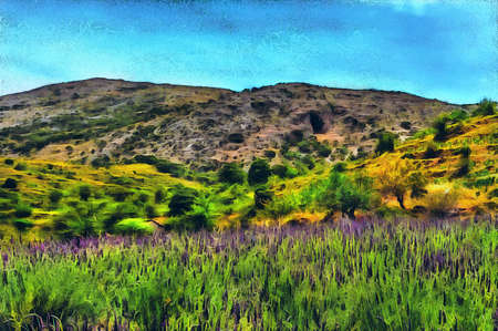 oil painting lavender blooming in the mountains