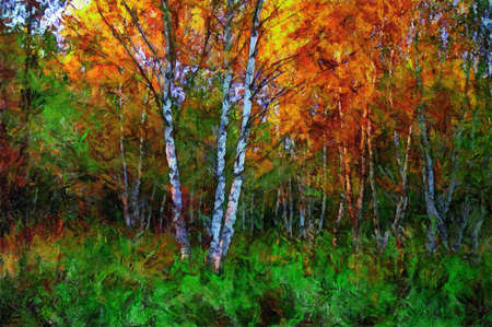 oil painting birch in the middle of  grass in autumn 写真素材