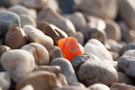lookalike: stone which differs among the many look-alike Stock Photo