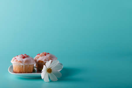 Colorful muffin on saucer with flower. Aqua color background Stock Photo