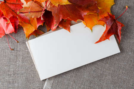 Fall leaves, bright canvas and craft paper fot inscription 写真素材