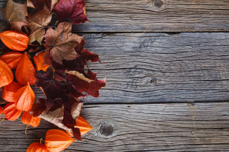 fall background: Fall leaves on rustic wooden background