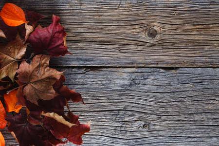 estaciones del año: Hojas de la caída en el fondo de madera rústica Foto de archivo