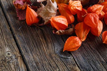 hojas antiguas: Hojas de la ca�da en el fondo de madera r�stica Foto de archivo