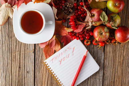 guelder rose: Fall wealth with message thank you in note on rustic wooden background Stock Photo