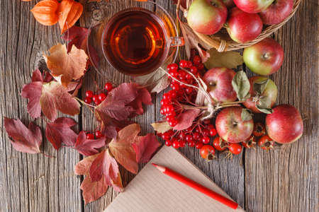 guelder rose: Fall wealth on rustic wooden background with notes
