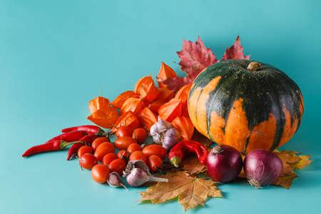 Colored fall harvest on aquamarine shadowless background Stock Photo