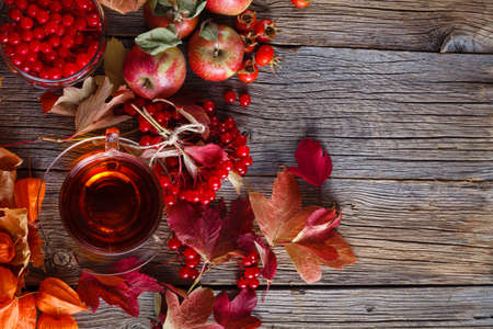 harvest: Fall harvesting on rustic wooden background, bright red tones