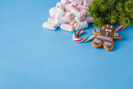 xmas background: Xmas decoration. Gingerbread man and marshmallow on blue monochromatic background