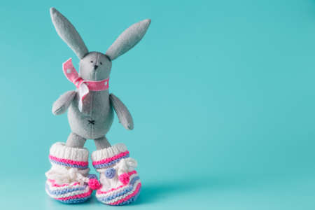 booties: Funny bunny in baby booties on aquamarine background