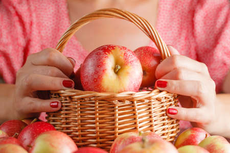 apple basket: Basket full with apples, woman hand holding apple basket Stock Photo