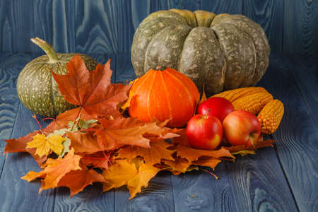 christendom: Thanksgiving - different pumpkins with nuts, berries and grain in front of wooden boards Stock Photo