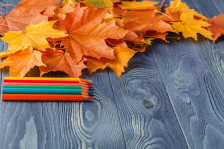 autumn colour: Colour pencils and autumn leaves on wooden background