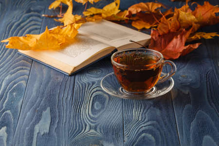 tea table: Cup of tea with old book, autumn leaves on wooden table