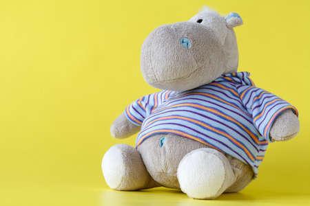 pies bonitos: Hippo de juguete suave