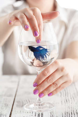 Fish in Hands