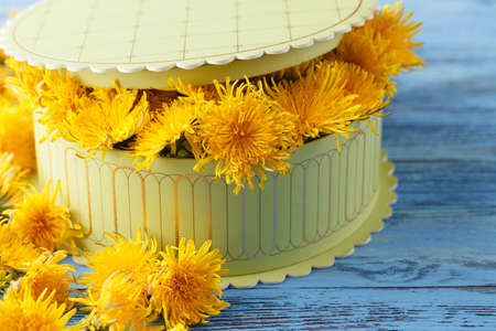 Florist at work: how to make box with dandelions flowers Stock Photo