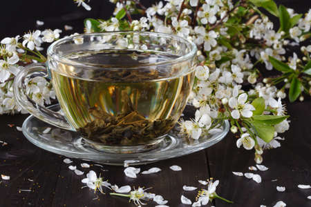 flavored: Cup of tea and cherry blossom branch