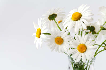 Bouquet of daisy-chamomile flowers Stock Photo