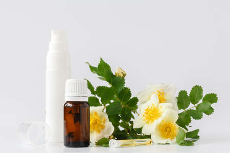Bottle of essential oil and cream with rose white petals and flower,