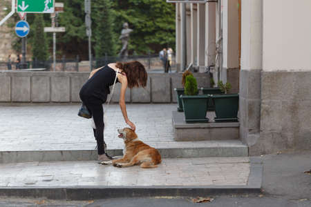 Cute young woman petting a stray dog outside