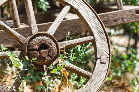 Antique wagon wheel at the courtyard farmhouse