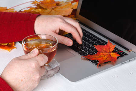 Mans hands using laptop with blank screen on desk in home interior. Stock Photo