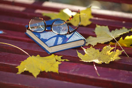 guardar silencio: A book with colored leaves embedded in it lies on a bench in the park in autumn Foto de archivo