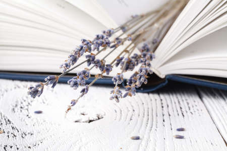 Retro bouquet of dry lavender with books Stock Photo