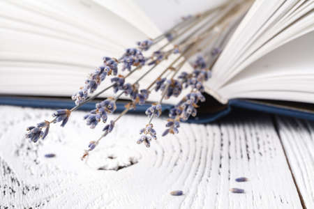 its memories, a bouquet of dry lavender and books