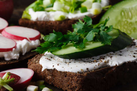 Crackers with cottage cheese, radish, cucumber decorated with cress salad and fresh herbs