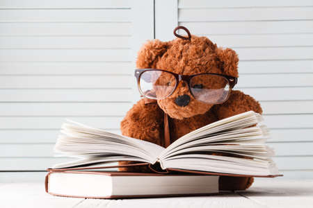 Kid Tale with teddy bear and books