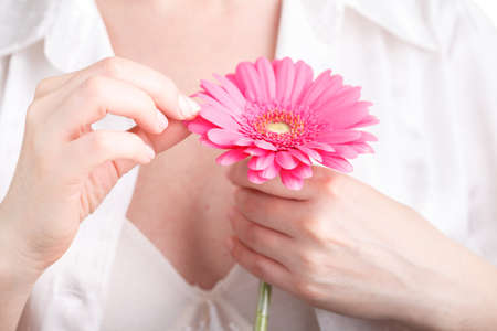 Female freshnes concept, pink flower gerbera in hand Stock Photo