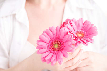 Soft tender protection for woman critical days, gynecological menstruation cycle, pink gerbera in hand Stock Photo