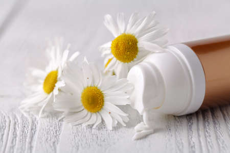 Opened plastic container with cream and chamomile flower on a light background. Herbal dermatology cosmetic hygienic cream. Natural beauty product