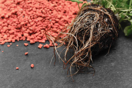 pile of pink fertilizer for plants Stock Photo