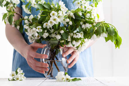 Putting a blooming twig into vase