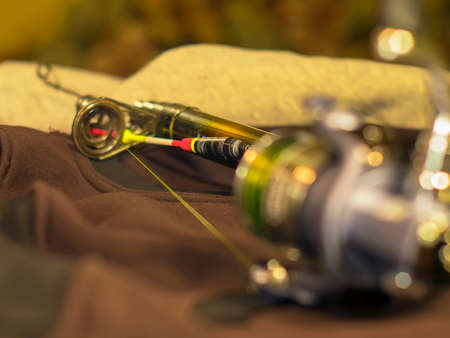 damping: Bright float, fishing reel and rod