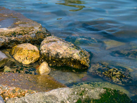 The stones with seaweed in the sea