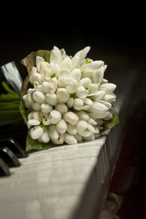 Bouquet of snowdrops laying on the piano keyboard Stock Photo - 9028662