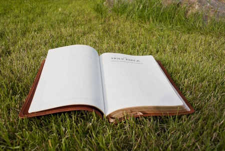 Open Bible laying on the green grass Archivio Fotografico - 9925685