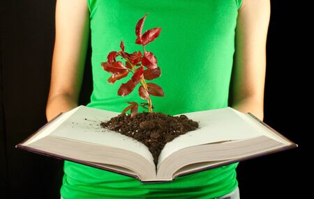 protection of the bible: Woman with open book and seedling grown from it